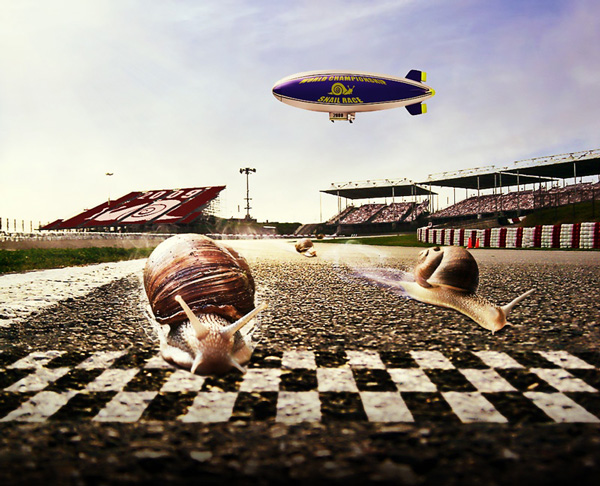 perierga.gr - Αγώνας ταχύτητας... σαλιγκαριών!!!