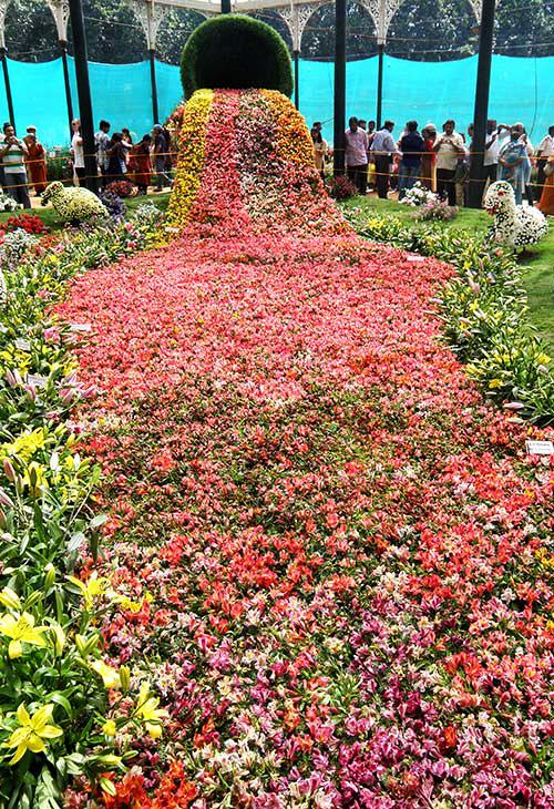 perierga.gr - Λίγα λουλούδια αν θέλεις στείλε μου...