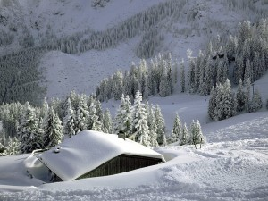 perierga.gr - Πώς να βγάλεις το χιόνι από τη σκεπή!
