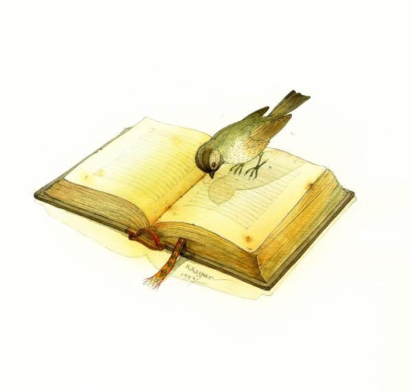 perierga.gr - Τα ωδικά πτηνά κελαηδούν με γραμματική & συντακτικό!