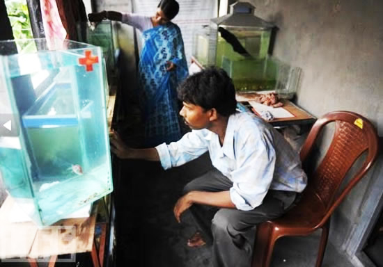 perierga.gr - Νοσοκομείο ψαριών στην Ινδία!