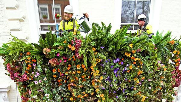 """perierga.gr - Οι """"κρεμαστοί κήποι του Paddington""""!"""