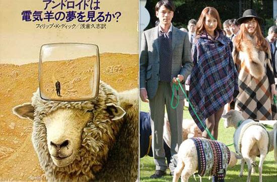 perierga.gr - Άνοιξε το πρώτο ξενοδοχείο για... πρόβατα!