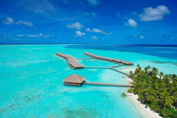 perierga.gr - Μαλδίβες: Βουτιά και... συχώριο!