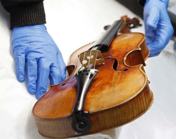 "perierga.gr - Μύκητες ""μεταμορφώνουν"" τα απλά βιολιά σε Stradivarius!"