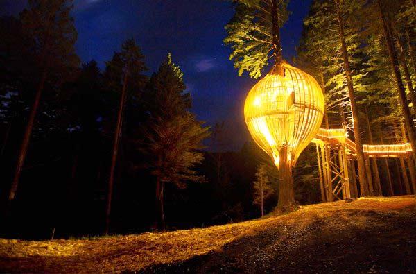 perierga.gr - Δείπνο 5 αστέρων πάνω στα δέντρα!