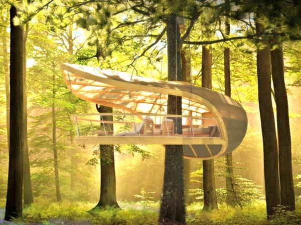 perierga.gr - Ένα θέρετρο πέντε αστέρων... κρέμεται στα δέντρα!