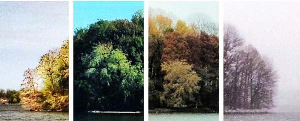 perierga.gr - Οι τέσσερις εποχές σε μια εικόνα!