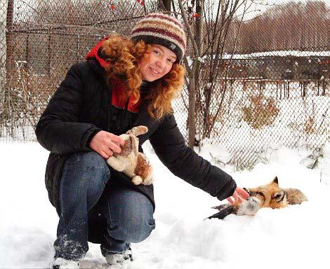 perierga.gr - Η αλεπού που συμπεριφέρεται σαν κατοικίδιος σκύλος!