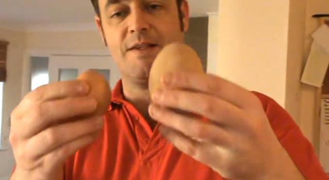 perierga.gr - Το μεγαλύτερο αυγό στον κόσμο κρύβει μια... έκπληξη!