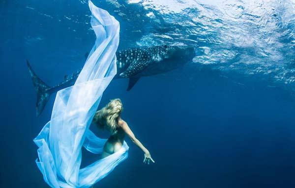 perierga.gr - Μοντέλα & καρχαρίες σε μια υποβρύχια... επίδειξη μόδας!