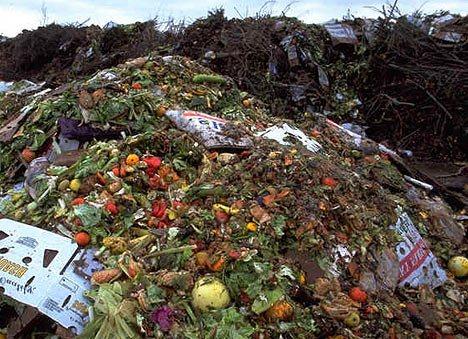 Perierga.gr - Στα σκουπίδια τα μισά τρόφιμα που παράγονται!