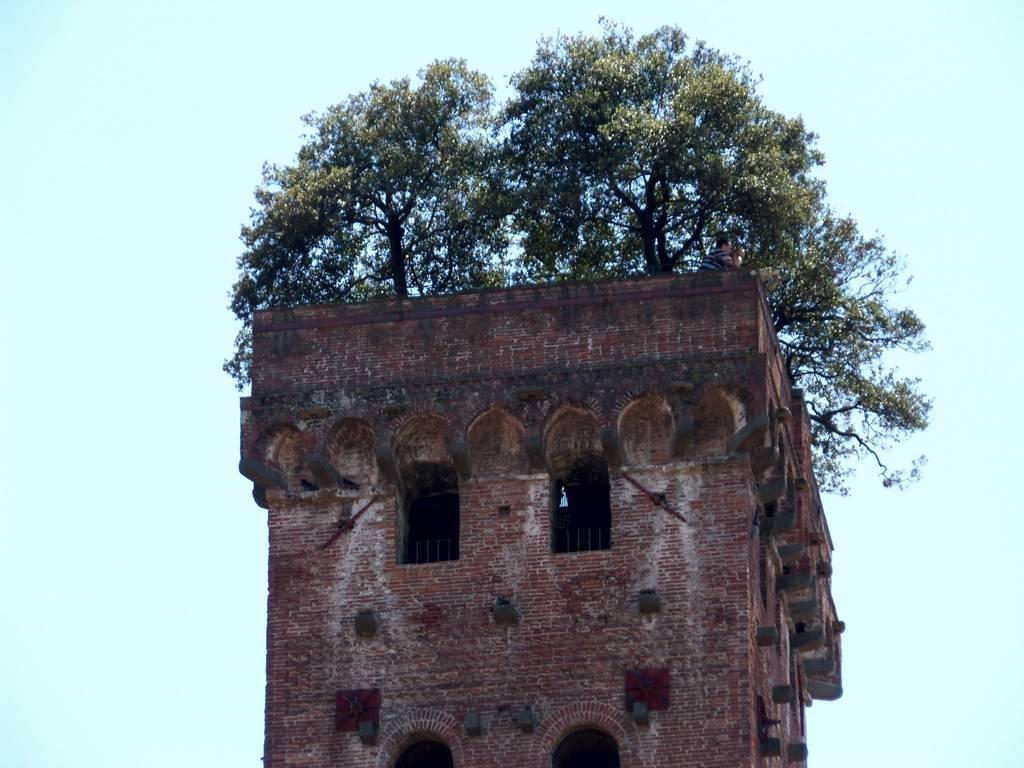 perierga.gr - Κήπος-έκπληξη στην κορυφή ενός μεσαιωνικού πύργου!