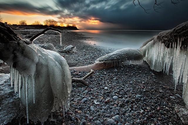 perierga.gr - Τα παγωμένα δέντρα της λίμνης Οντάριο!