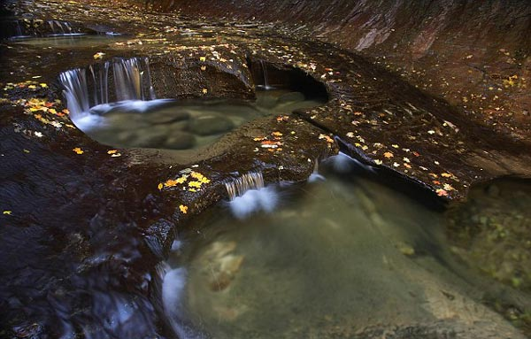 perierga.gr - «Το Μετρό της φύσης» είναι το πιο όμορφο!