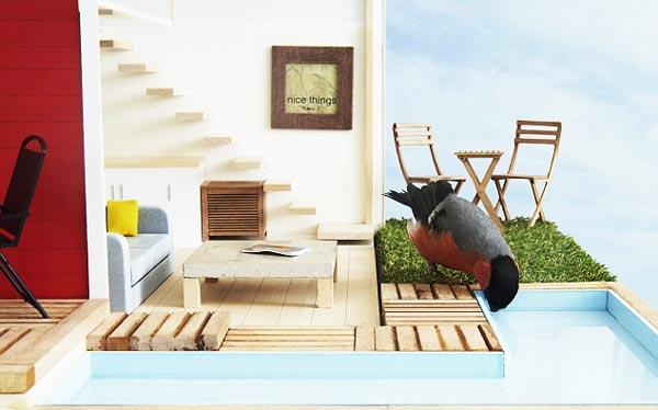 perierga.gr - 5άστερο σπιτάκι για... πτηνά με πισίνα!!!
