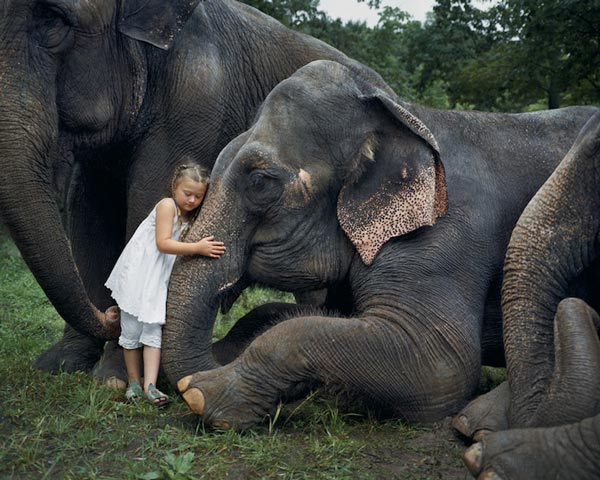 perierga.gr - Η μικρή Amelia και οι φίλοι της τα άγρια ζώα!