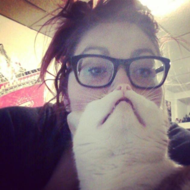 perierga.gr - Beard Cat: Γατίσιες... γενειάδες γίνονται η νέα μόδα!