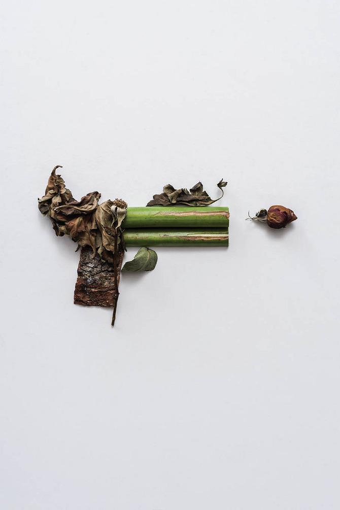 perierga.gr - Ακίνδυνα... όπλα φτιαγμένα από φυτά!