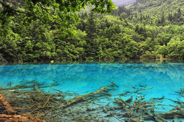 perierga.gr - Lake Nelson: Η λίμνη με τη μεγαλύτερη διαύγεια!