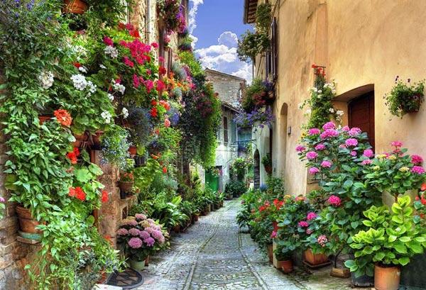 "perierga.gr - Spello: Η ""ανθισμένη"" πόλη της Ιταλίας!"