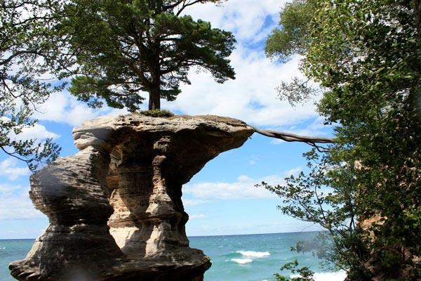 perierga.gr - Το δέντρο που μεγαλώνει στο βράχο!