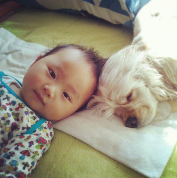 perierga.gr - Το ιδιαίτερο δέσιμο ενός σκύλου και ενός παιδιού καρέ καρέ!
