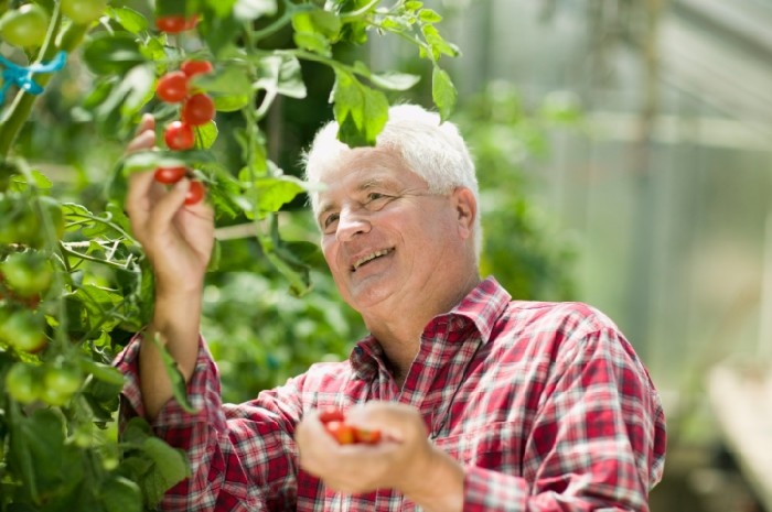 perierga.gr - Η κηπουρική υπόσχεται μακροζωία!