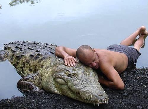 perierga.gr - Το δέσιμο των ανθρώπων με τα άγρια ζώα!