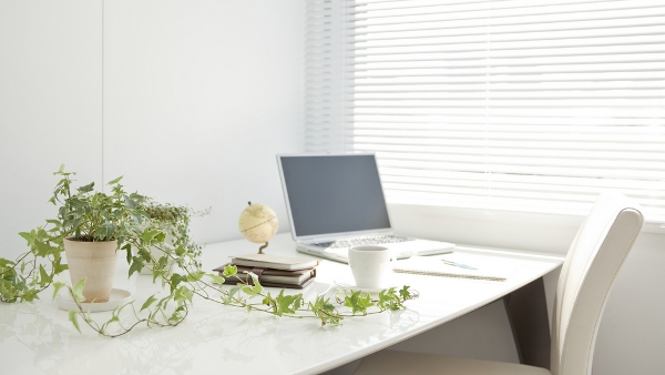 perierga.gr - Τα φυτά στο γραφείο αυξάνουν την παραγωγικότητα!