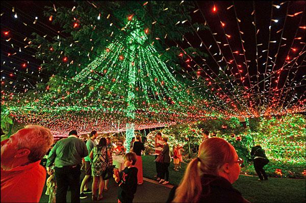 perierga.gr - Το σπίτι με τα 502.162 χριστουγεννιάτικα φωτάκια!