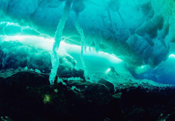 """perierga.gr - Παράξενοι """"σταλακτίτες"""" πάγου κάτω από το νερό!"""