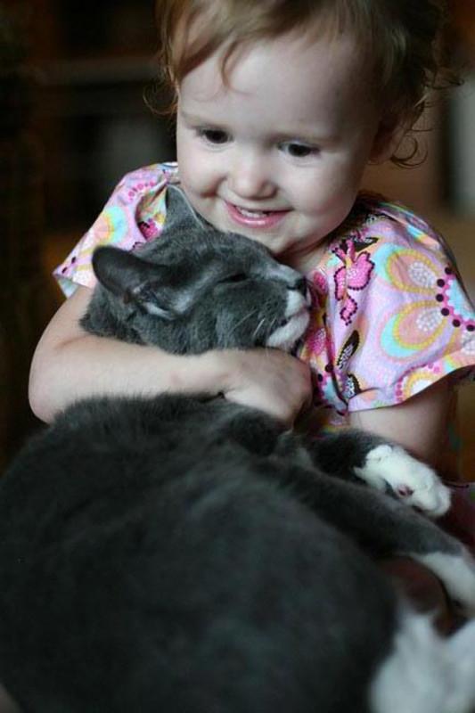 perierga.gr - Γιατί αγαπάμε τις γάτες;