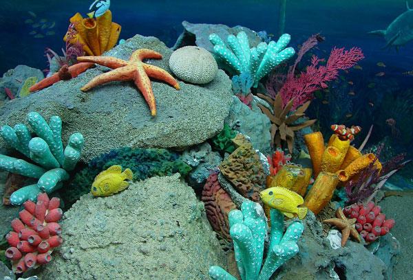 perierga.gr - 5+1 απίστευτα πράγματα για τους ωκεανούς!