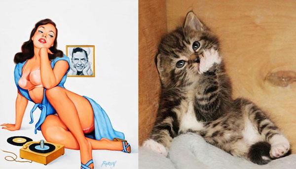 perierga.gr - Αστείες φωτογραφίες με γάτες που ποζάρουν σαν pin up girls!