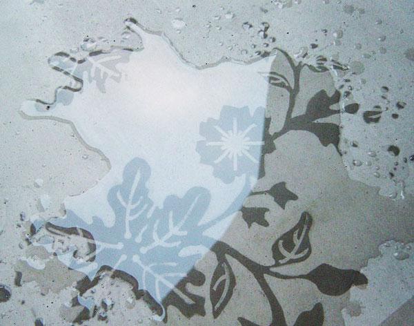 perierga.gr - Μαγικά πλακάκια… ανθίζουν με το νερό!