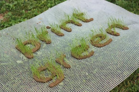 perierga.gr - Καινοτόμος εκτυπωτής ενώνει την Τέχνη με τη φύση!