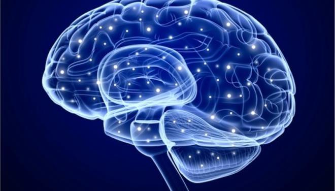 perierga.gr - Σε ποια σημεία του εγκεφάλου διαφέρουν οι άνδρες από τις γυναίκες