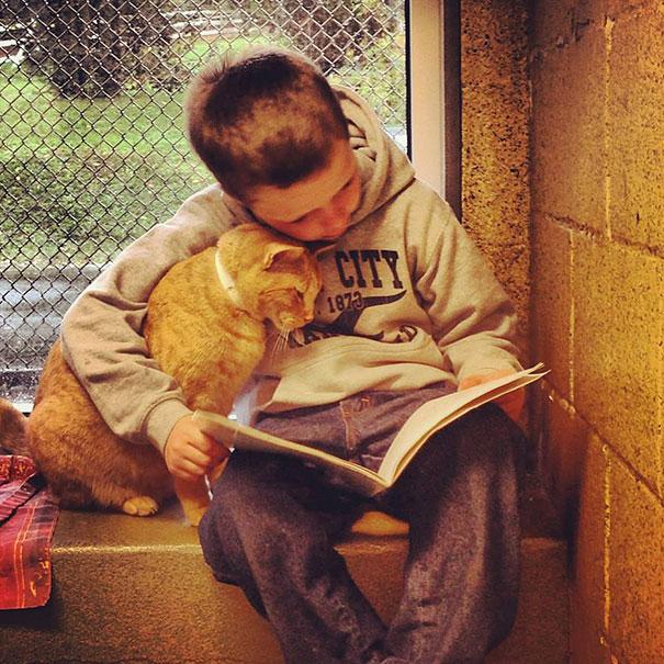 perierga.gr - Διαβάζοντας σε γάτες, παιδιά Δημοτικού βελτιώνουν την ανάγνωση!