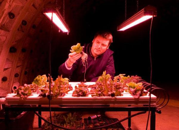 perierga.gr - Ο πρώτος υπόγειος λαχανόκηπος είναι γεγονός!