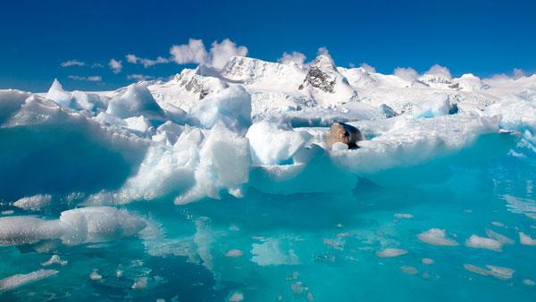 perierga.gr - Οι πάγοι της Αρκτικής σε ταινία κλιματικής καταστροφής