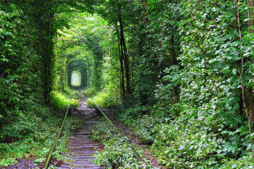 perierga.gr - Η φύση παρέχει την τέλεια... κορνίζα!