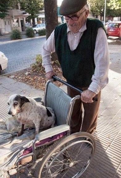 perierga.gr - Ακόμα υπάρχουν άνθρωποι: Φωτογραφίες που θα σας συγκινήσουν!