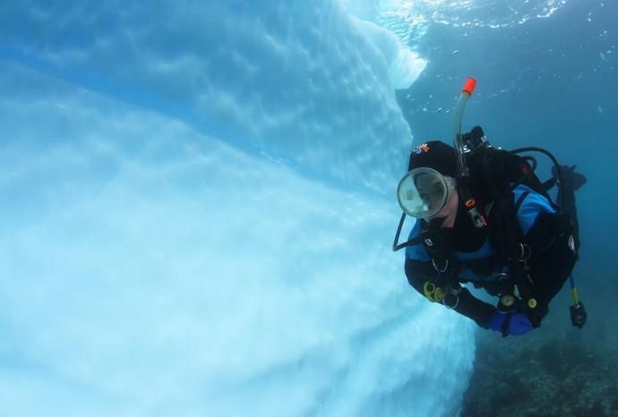 perierga.gr - Πολικό... ψαροντούφεκο στα νερά της Ανταρκτικής!