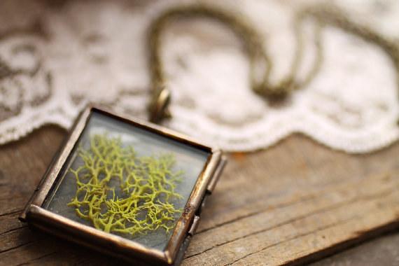 perierga.gr - Εντυπωσιακά κοσμήματα με αληθινά φυτά!