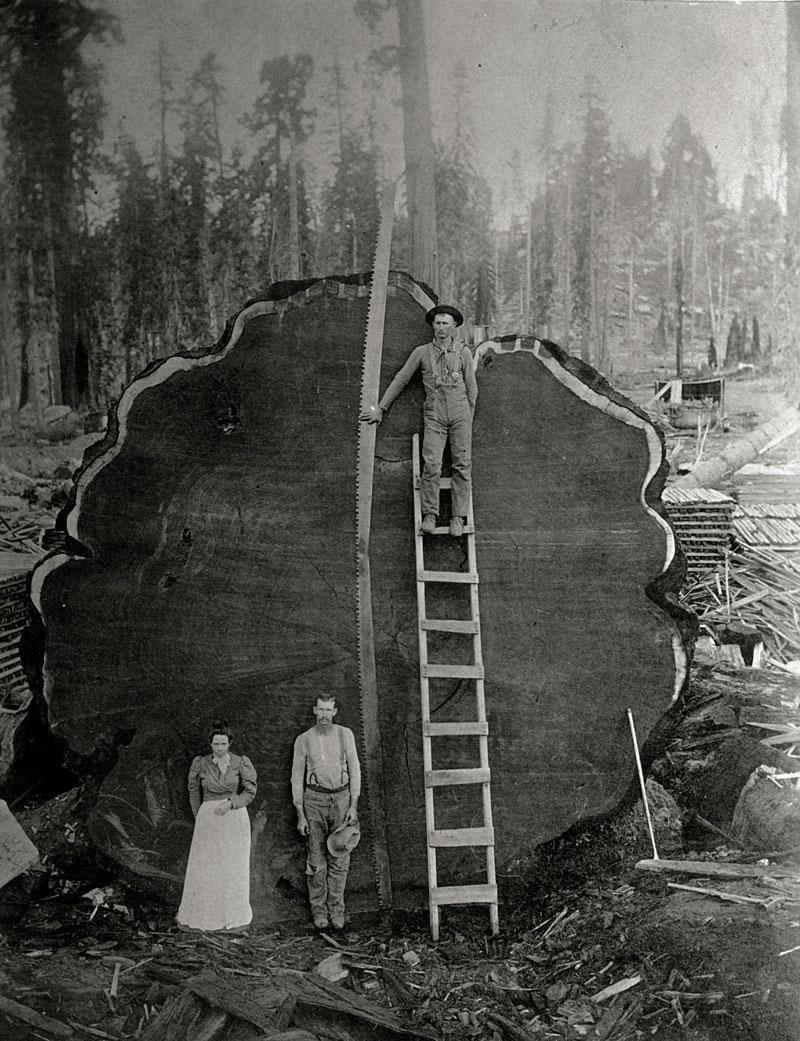 perierga.gr - Οι καλύτερες φωτογραφίες του National Geographic τα τελευταία 125 χρόνια