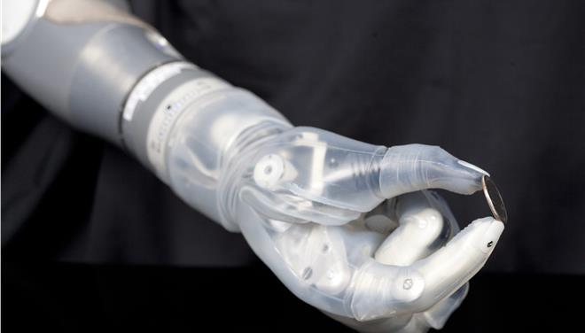 perierga.gr - Έφτιαξαν ρομποτικό χέρι που πιάνει... πουλιά στον αέρα!