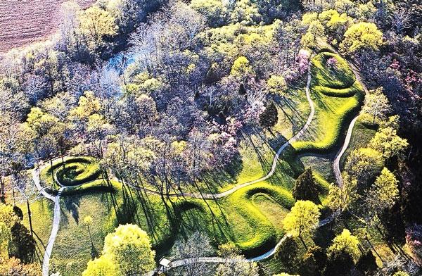 perierga.gr - Καταπράσινο τοπίο στο δάσος σε σχήμα φιδιού!