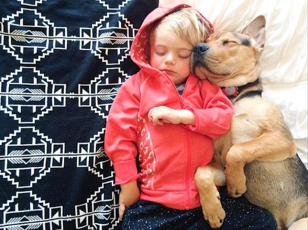 perierga.gr - Το κουτάβι... μεγάλωσε και συνεχίζει να κοιμάται με το αγοράκι!