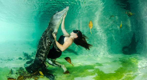perierga.gr - Τρομακτικές πόζες με... αλιγάτορες!